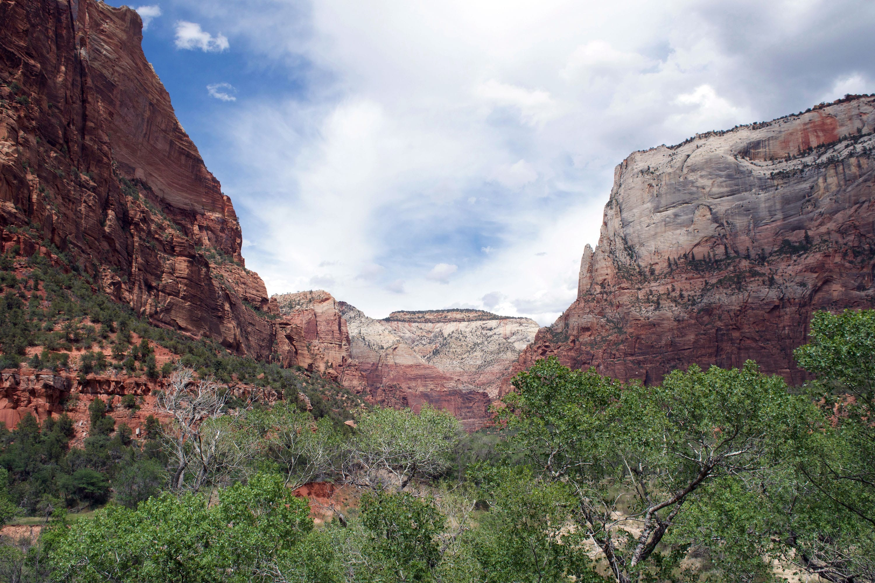 underrated hikes in zion